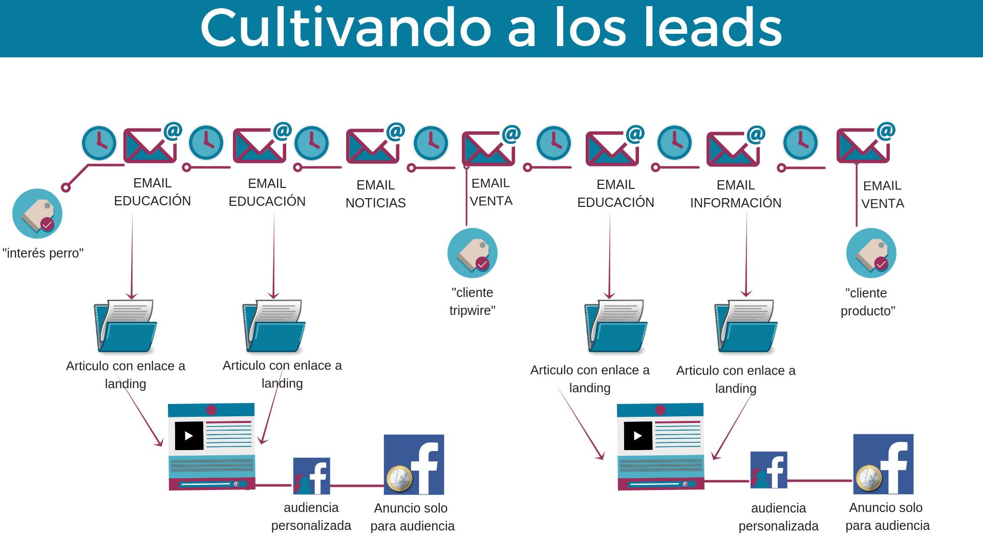 Embudo automatizado de cultivando a los leads